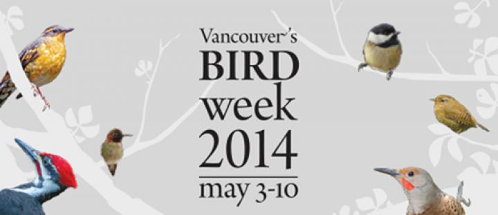 Неделя птиц в Ванкувере