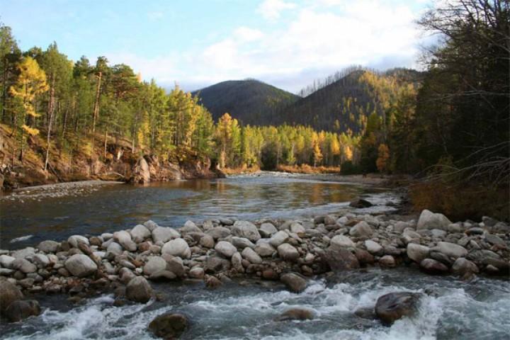 В Байкальском заповеднике вновь открыта  эко тропа «Кедровая аллея»