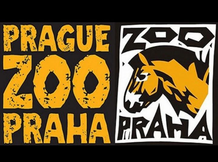 Павильон черепах открыл свои двери в Праге