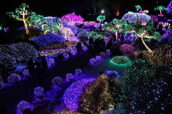 Фестиваль света и огней зимней ночи в Южной Корее