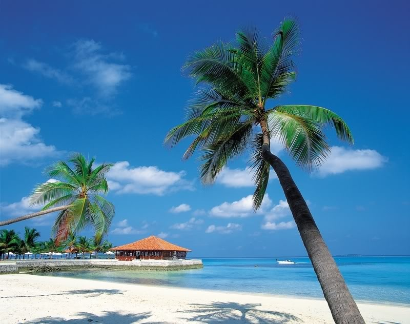 Круизы по Карибским островам